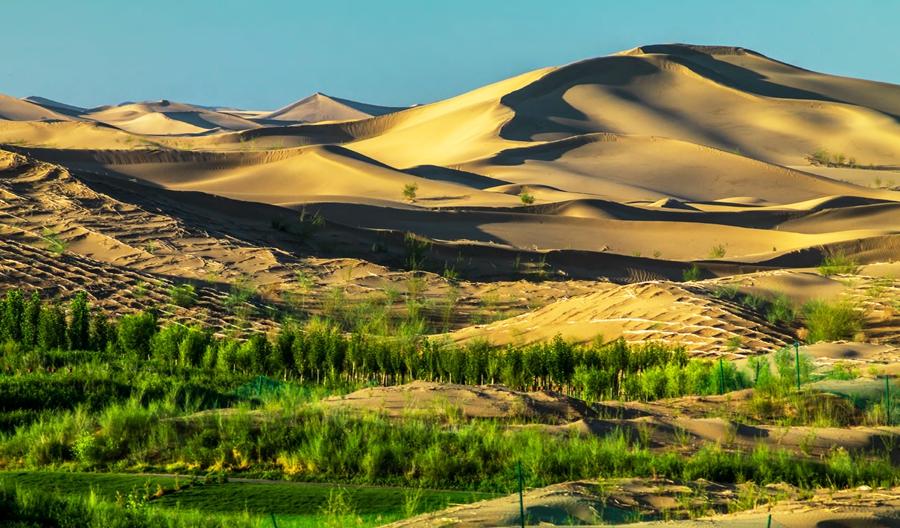 Kubuqi Desert [China.org.cn]