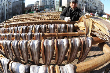 Fish dehydrated to greet Spring Festival