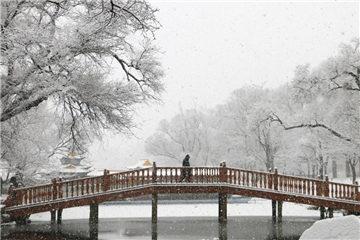 Snowfall hits N. China's Hebei