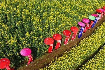 Spring scenery around China