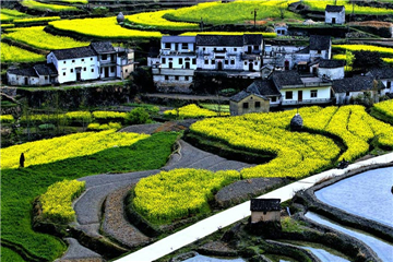 Untouched paradise: ancient village in southern Anhui