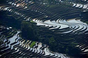 Scenery of Hani terraced fields in Yunnan