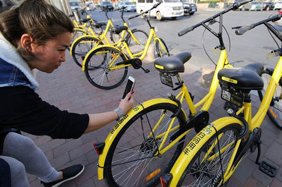 A rider in Qingdao, Shandong province, scans bar code for riding an ofo bike. [Photo/China Daily]