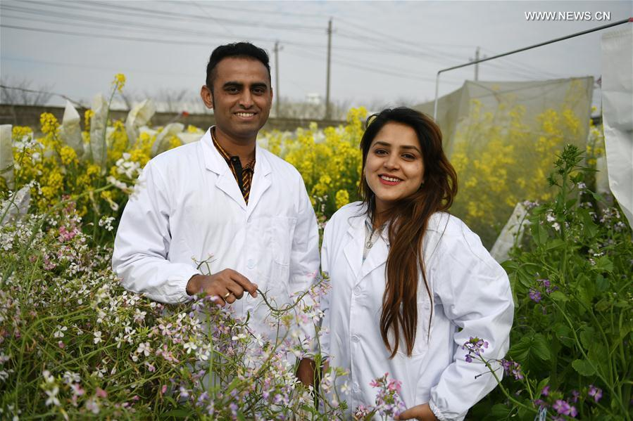 Pakistani couple cultivate flowers in China
