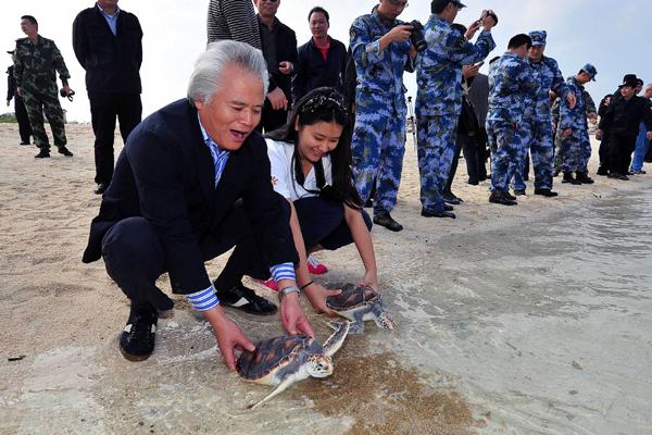 Sea turtle population surges on islands