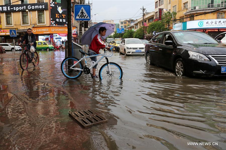 A flooded street is seen in Weining County, southwest China's Guizhou Province, June 11, 2017. Heavy rain hit Guizhou since Sunday. (Xinhua/He Huan)