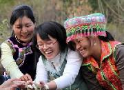 发展访谈:提高农村妇女参政比例带来哪些新变化