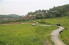 【镜头中的脱贫故事】赣州市章贡区花溪间 精准脱贫的花海