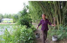 【镜头中的脱贫故事】特色种植产业助力赣南老表脱贫奔小康
