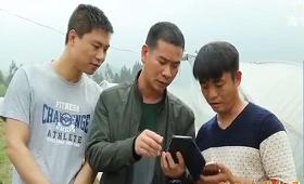 """湖南卢阳镇:推出""""互联网+精准扶贫""""模式"""