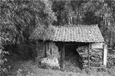 【镜头中的脱贫故事】我生在一个小山村 那里正发生'美丽蜕变'