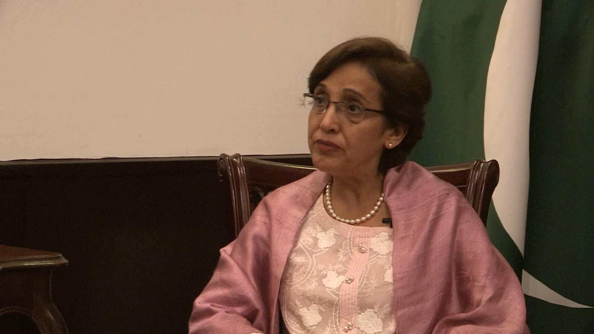 """巴基斯坦外交国务秘书:""""一带一路""""倡议为世界带来发展繁荣"""