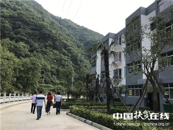 临山而建,绿意盎然,这里便是陕西省商洛市山阳县漫川关镇板庙村的移民