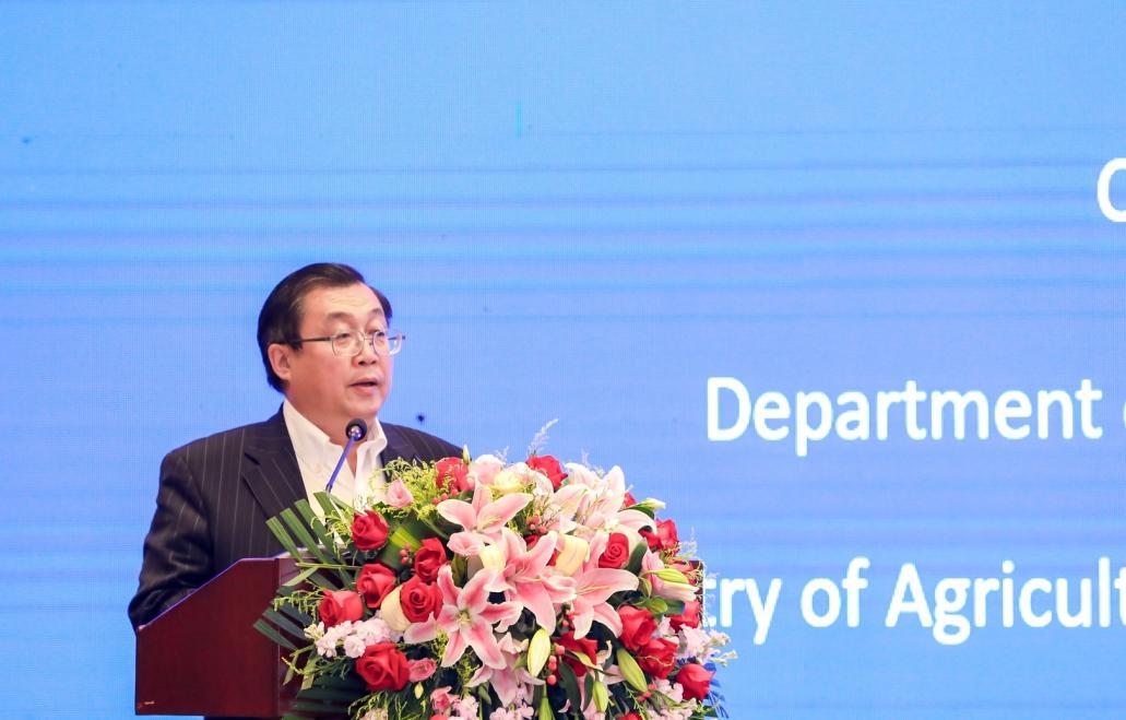 农业农村部官员:中国方案助力非洲解决粮食安全问题