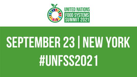 屈冬玉总干事:联合国粮农组织大力推动农业粮食体系转型